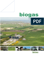 Biogas_handbook.pdf