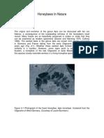 1 Honeybees In Nature-Thomas D. Seeley.pdf