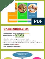 carbohidratos expo