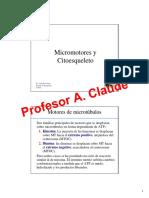 Micromotores y Citoesqueleto