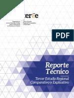 Reporte Tecnico TERCE