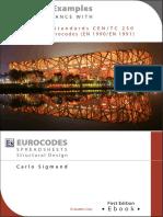Eurocodes Sigmund Demo