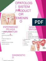 Fisiopatologia ARF