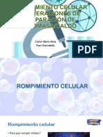 Rompimiento Celular y Operaciones de Separación de Biomasa.pptx