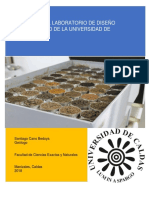Manual Del Laboratorio Final
