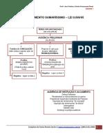 Direito Processual Penal - JECRIM I.pdf