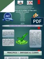 Principios Norma Iso 001 2015 (1)