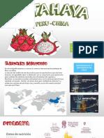 Pitahaya PDF