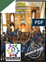 Plan de pastoral juvenil finaL.pdf
