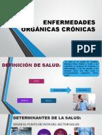 ENFERMEDADES ORGÁNICAS CRÓNICAS