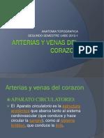 ANATOMIA_DE_Arterias_y_venas_del_corazon.pptx