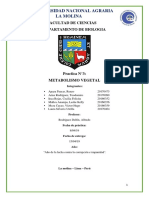 Metabolismo Vegetal - Fisiología Vegetal