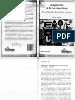 Adqusicion_de_la_lecto-escritura.pdf