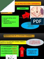 Fisiología de La Protección Cerebral