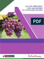 INFORME DE UVA PERUANA