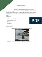 DENSIDAD-APARENTE.docx