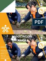 PRESENTACION. asociacion amcar pptx.pptx