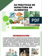 Buenas Practicas de Manufactura en La Manipulacion de Alimentos