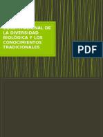 Protección Constitucional de la Biodiversidad y los CT.pptx