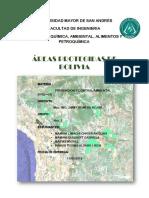 Ensayo Areas Protegidas Prevencion Comb
