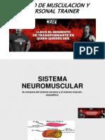 Contraccion Muscular y Fibras