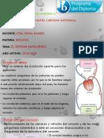 6.2) EL SISTEMA SANGUÍNEO ÁNGEL QUITO.pptx