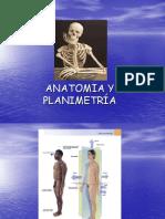 Anatomía y Planimetría