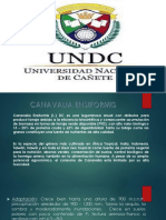 PPT CANAVALIA