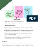 Diversidad y clasificación de los procariotas y archaeas.docx