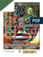 331665195 Manual Sanacion Chamanica Amadeus Completo 1