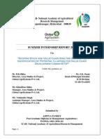Aditya Pandey - Summer Internship Report.pdf