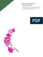Flowers Fxcom
