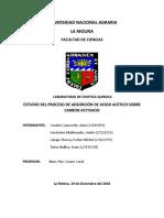 INFORME_CARBONO ACTIVADO