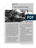 calda_bordalesa_2