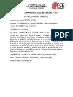 INFORMACION PRACTICA (E).docx