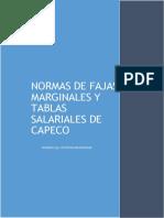 Informe Final Faja Marginal Capeco