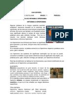 GUÍA N°3 GRADO 11 HIPER- HIPO (1).docx