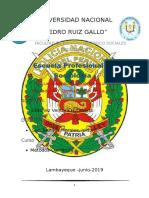 INFORME-SEGURIDAD-CIUDADANA.docx
