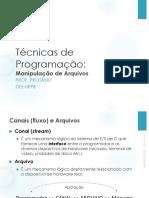 10_TP_Manipulação_de_Arquivos.pdf