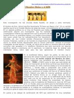 YHVHDNA9.pdf