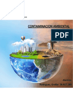 Trabajo de Contaminacion SAIA.docx