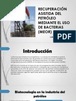bio ppt (1).pptx