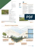 Bioswale.pdf