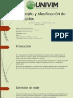 conceptoyclasificacindelostejidos-161028034412-convertido