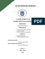 LABORATORIO Nº 06- DESCRIPCIÓN DEL PROCEDIMIENTO - MITOSIS.docx