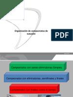 Elementos Fundamentales en La Organizaci n de Campeonatos- TAF