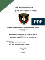 D_20_DIAZ_2019063SILABO EXPERIENCIAS FORMATIVAS 2019 experiencias formativas en situacion real.docx