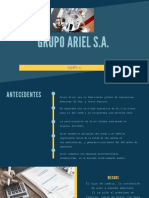 grupo ariel s.a.