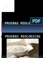 PRUEBAS-REOLOGICAS