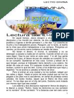 Lectio Divina t.o. Xiv c